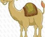 مقایسه ی ادرار گاو و ادرار شتر، در اسلام و دین زرتشتی / خوردن ادرار شتر در احادیث تنها جنبه ی درمانی دارد